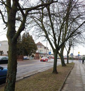 Kto będzie zarządzał drogami powiatowymi w mieście Rawa Mazowiecka?